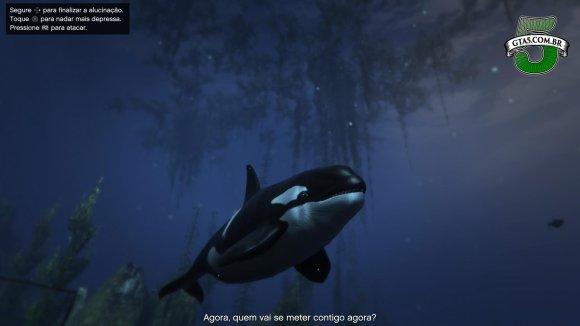 Baleia Orca GTA 5